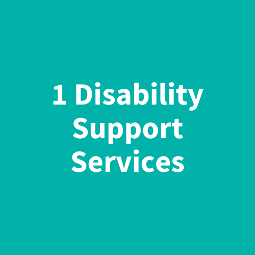 1 Disability Support Services
